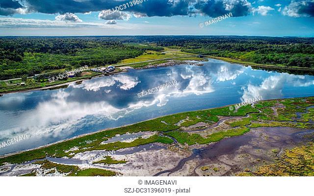 Aerial Photography of Marshland