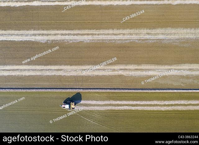 Tractor sowing rice seeds in a flooded rice field in May. Aerial view. Drone shot. Ebro Delta Nature Reserve, Tarragona province, Catalonia, Spain