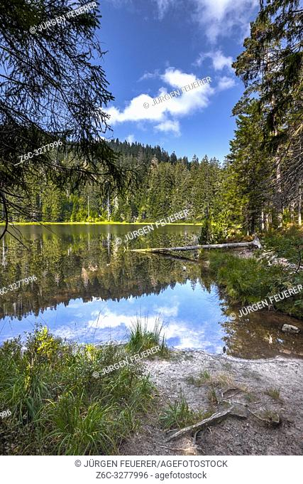 natural scene of the Wildsee, Ruhestein; Baiersbronn in the Black Forest, Germany, protected nature reserve and National Park