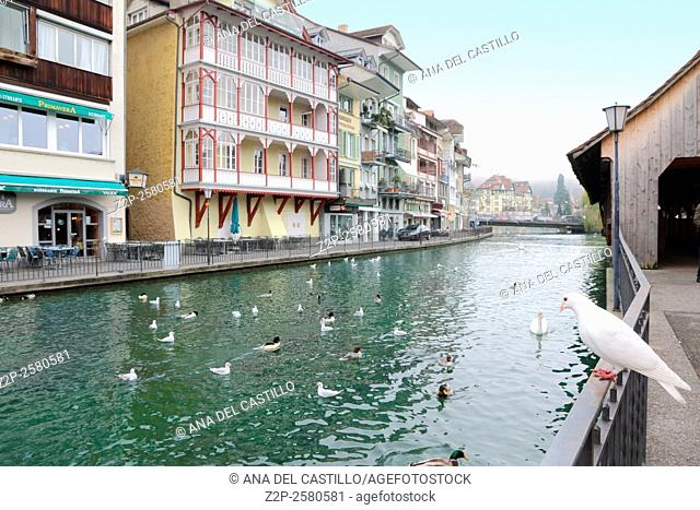 Thun is a medieval city in the administrative district of Thun in the canton of Bern, located where the Aare river flows out of Lake Thun Switzerland