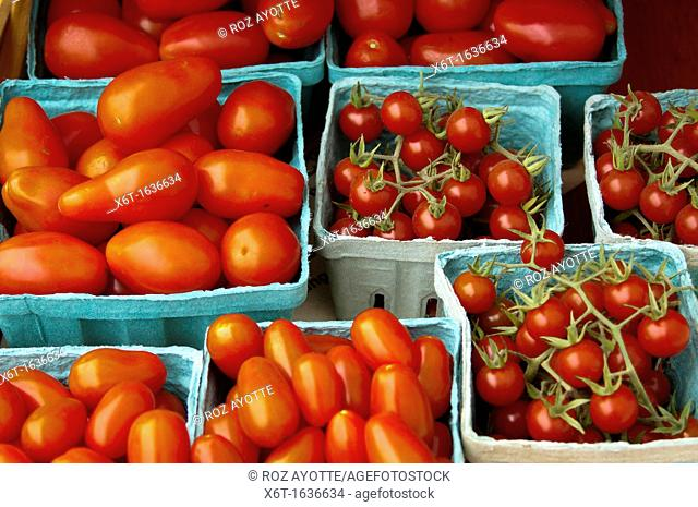 A variety of small quart and pint containers of tomatoes for sale at a farmer's market