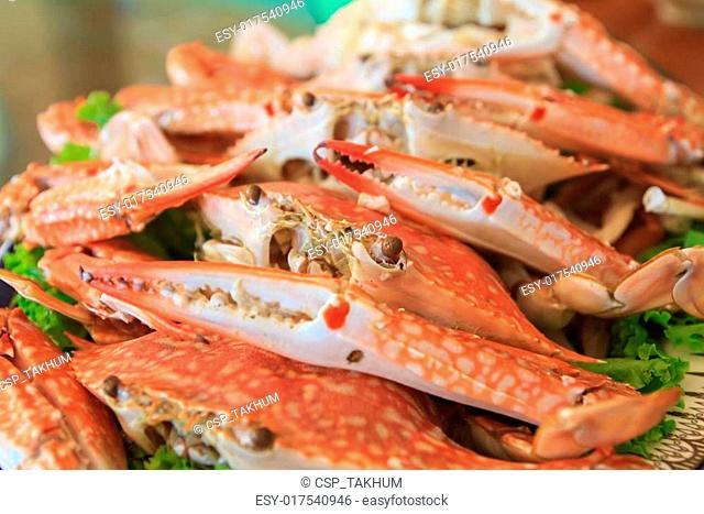 Steamed Crabs for serving