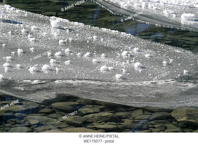Many ice crystals on sheet of ice. Lake Louise, Banff National Park, Alberta, Canada