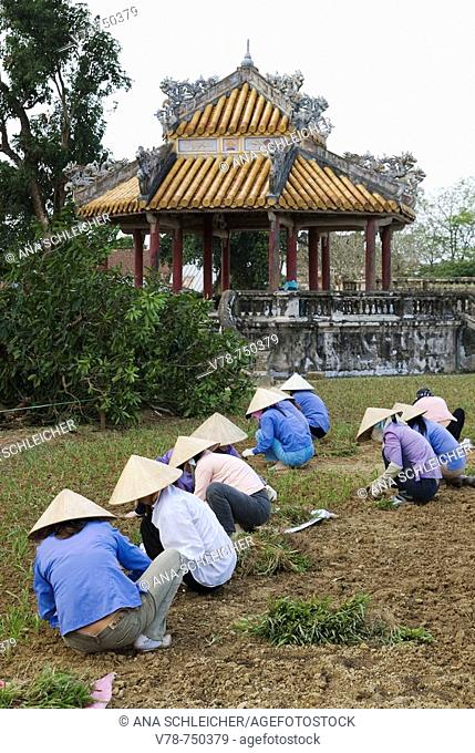 Cultivation works in the old Imperial city of Hue. Central Vietnam