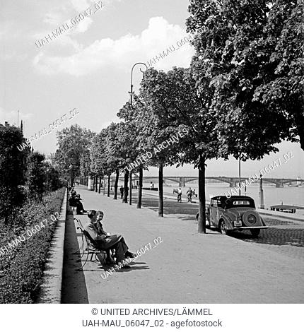 Promenade am Rheinufer in Mainz, Deutschland 1930er Jahre. Promenade at the city of Mainz on the shore of river Rhine, Germany 1930s