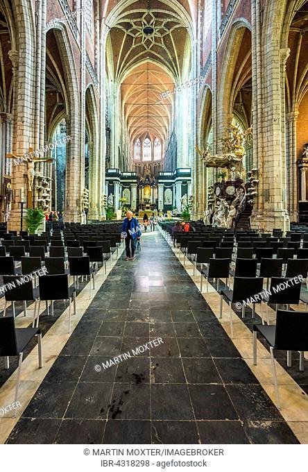 Cathedral of Saint Bavo, Sint-Baafskathedraal, Ghent, Flanders, Belgium