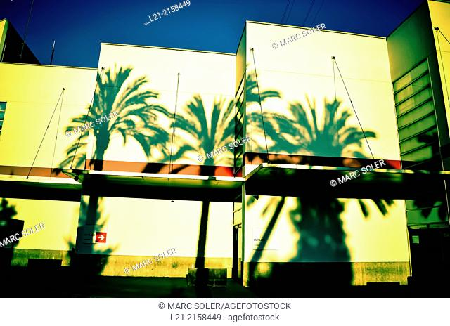 Shadow of palm trees reflected on white walls. Barcelona, Catalonia, Spain