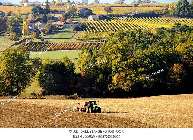 France, Aquitaine, Dordogne, corn fields and vineyards near Vélines