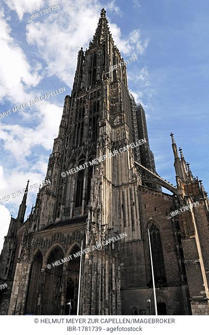 Ulm Minster, with a steeple measuring 161.53 metres, the tallest church tower in the world, Muensterplatz square, Ulm, Baden-Wuerttemberg, Germany, Europe