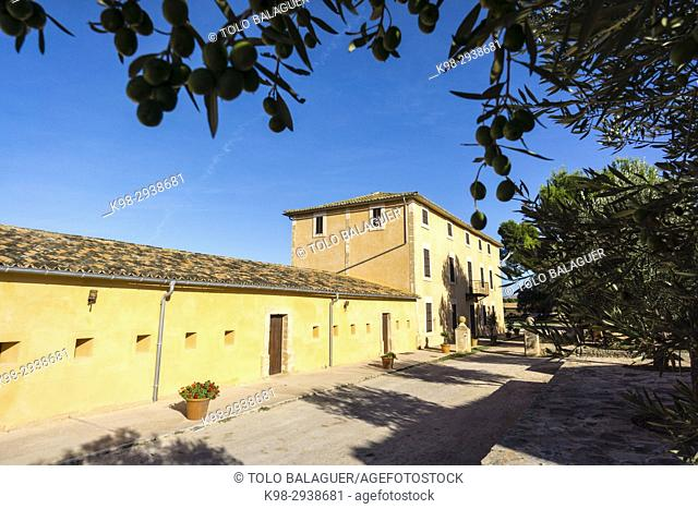 finca publica Son Real, Santa Margarida, Mallorca, Balearic Islands, Spain