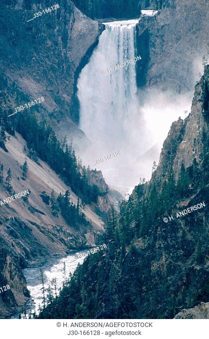Lower Falls of Yellowstone River. Grand Canyon of Yellowstone. Yellowstone National Park. Wyoming. USA