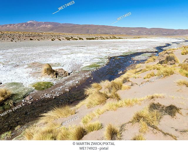 The Argentinian Altiplano along the Routa 51 between Antonio de los Cobres and Olcapato. South America, Argentina
