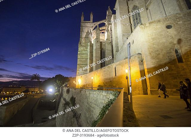 Cathedral in Palma de Majorca by night. Spain