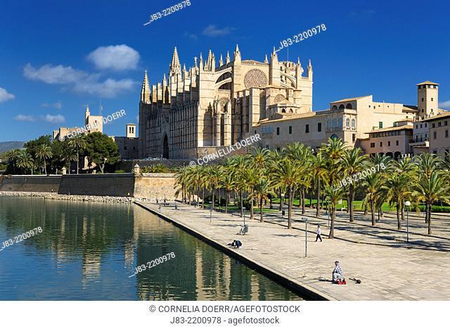 Park plantings and Cathedral cathedral of santa maria of palma la seu, spring, Palma de Mallorca, La Palma, Majorca, Balearic Islands, Spain, Mediterranean