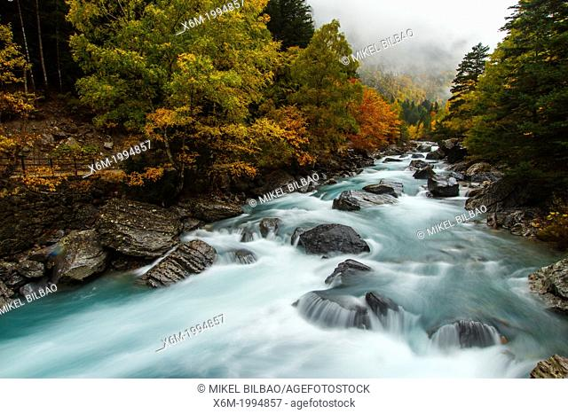 River and deciduous forest in autumn. Bujaruelo Valley. Huesca, Aragon, Spain, Europe
