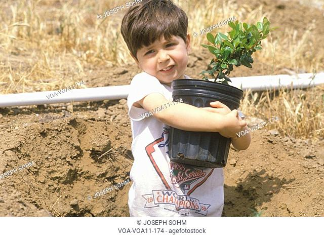 A boy holding a tree to be planted on Earth Day