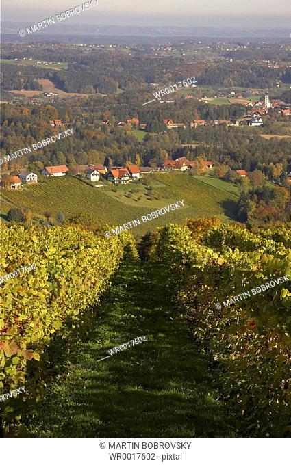 landscape of Schilcher Weinstrae