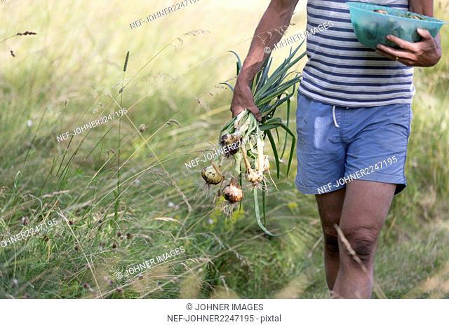 Man holding onions