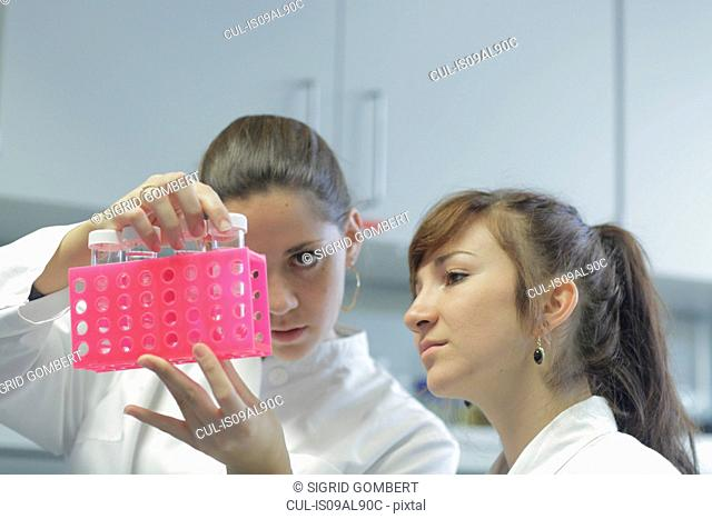 Biology lab technicians having discussion at work
