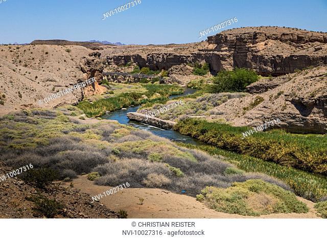 Colorado River, Nevada, USA