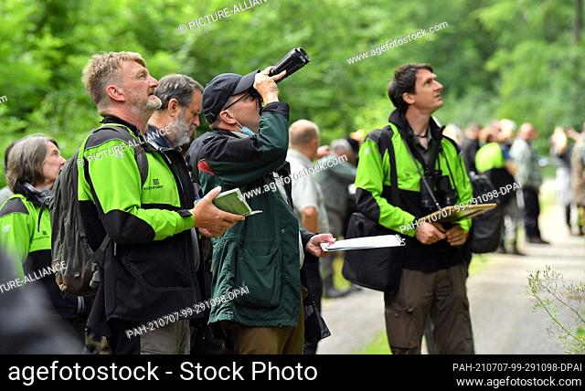 07 July 2021, Thuringia, Gotha: Foresters evaluate the condition of trees at a training event of the State Forestry Office Thüringenforst in preparation for the...