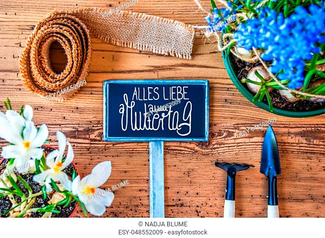 Sign With German Calligraphy Alles Liebe Zum Muttertag Means Happy Mothers Day. Spring Flowers Like Grape Hyacinth And Crocus