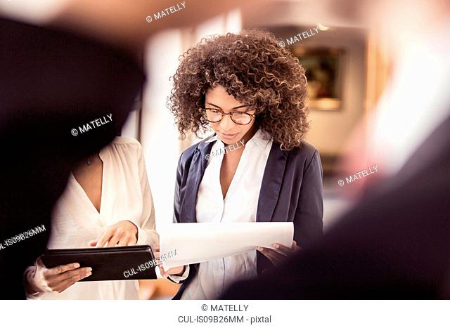 Young businesswoman reading paperwork in office