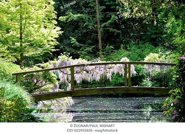Wooden bridge over stream