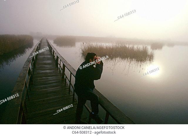 Birdwatcher. Birdwatching. Tablas de Daimiel National Park. Ciudad Real province. Castilla-La Mancha. Spain