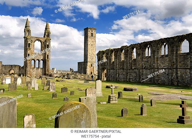 14th Century ruins of east tower and south wall of St Andrews Cathedral nave with 12th Century St Rules Tower St Andrews Fife Scotland UK
