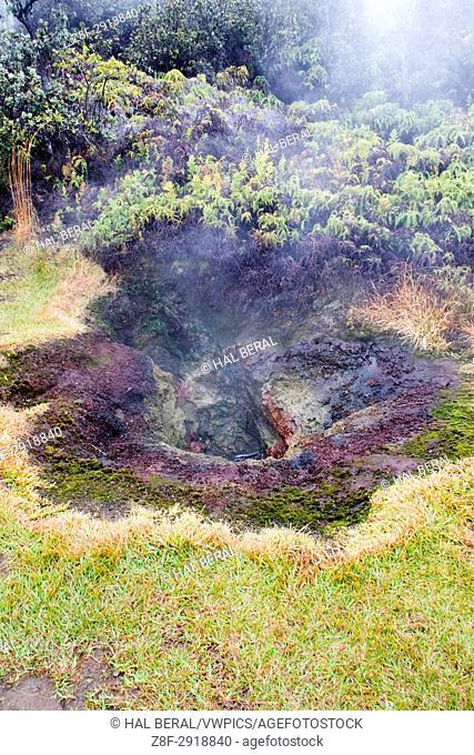 Volcanic steam vent near Kilauea Caldera, Hawaii Volvanoes National Park, Big Island, Hawaii