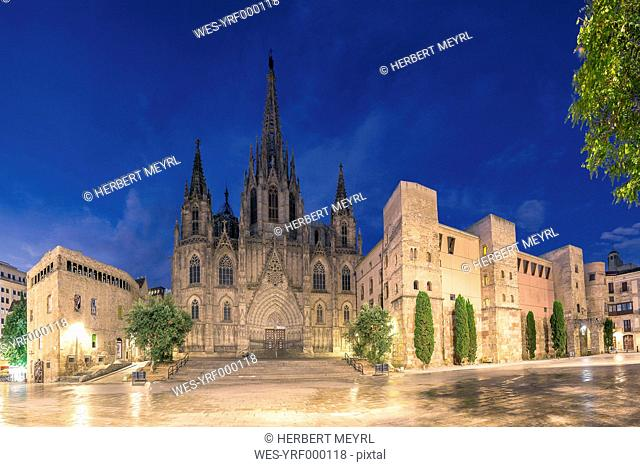 Spain, Barcelona, Cathedral in the evening