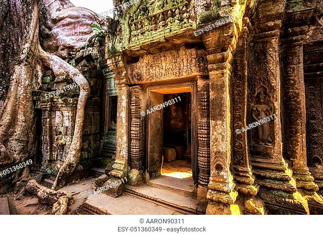 Ta Prohm temple and ruins in Siem Reap