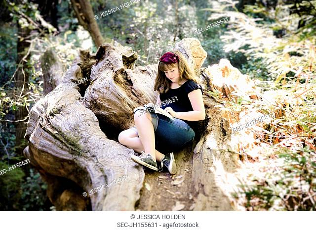 Picture of teenage girl (13-15) reading book in forest