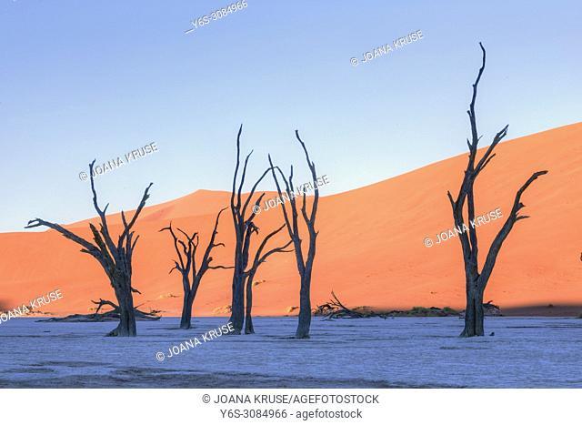 Sossusvlei, Namib desert, Namibia, Africa