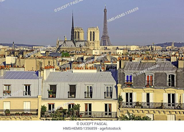 France, Paris, area listed as World Heritage by UNESCO, Notre Dame cathedral on the City island, the Eiffel Tower and parisian rooftops