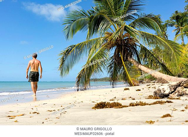 Man walking along a tropical beach, Cahuita National Park, Costa Rica