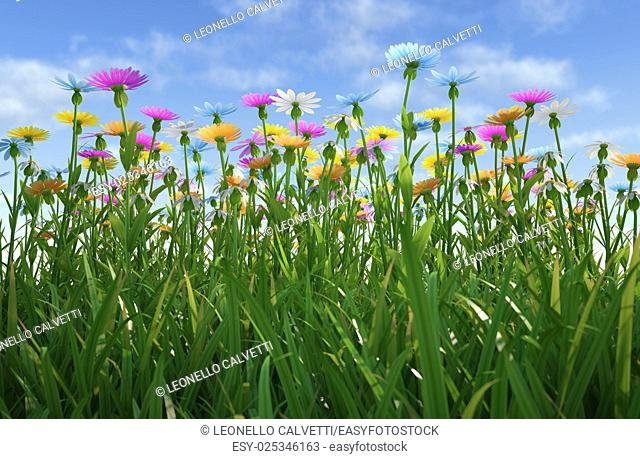 Close up view of a grass filed, plenty of multicolored flowers, viewed from a side with close grass