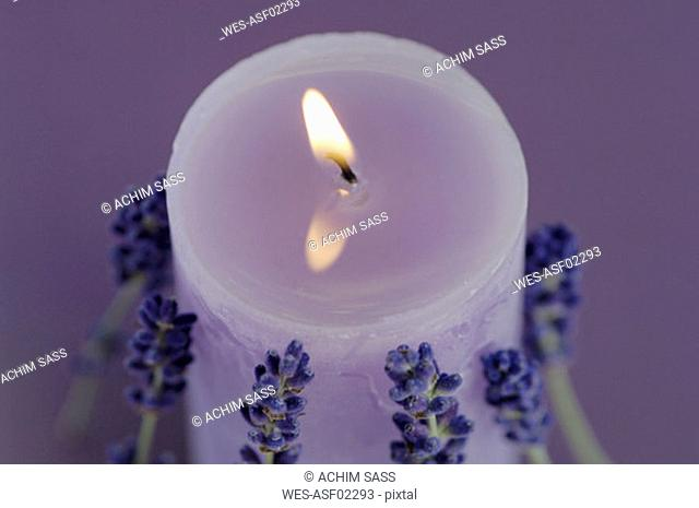 Burning lavender candle