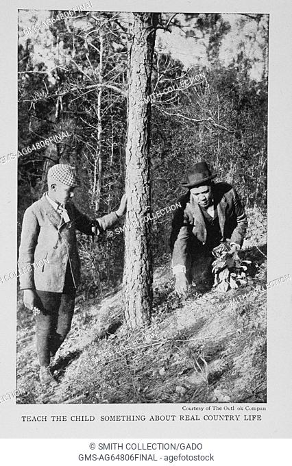 Teach the child something about real country life, photograph showing children scavenging among trees in the woods, 1904