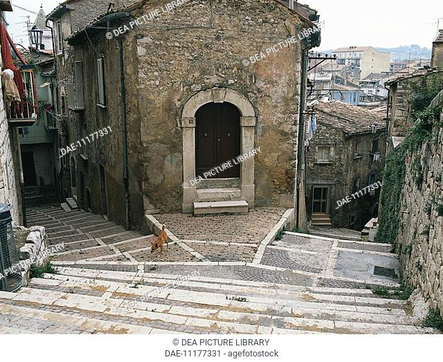 High angle view of a dog in front of a building, Old Town, Campobasso, Molise Region, Italy
