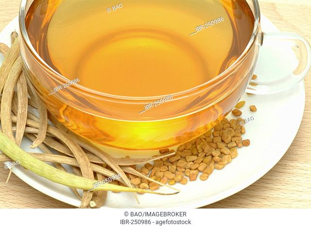 Tea made of Fenugreek, Trigonella foenum-graecum, fornum graecum, Fieno greco