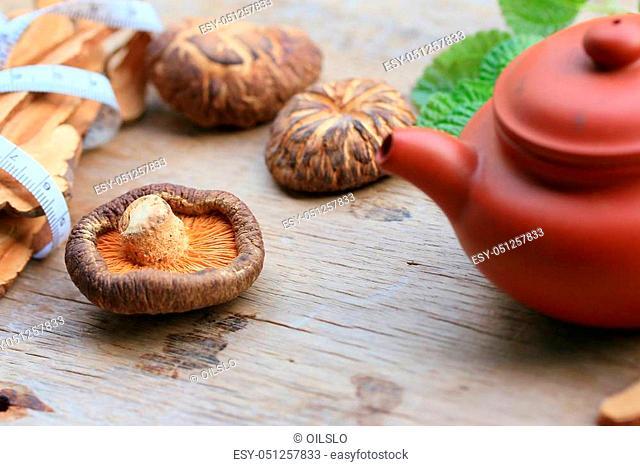 Ganoderma lucidum hot tea