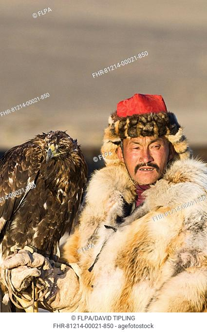 Kazakh hunter with Golden Eagle Aquila chrysaetos, Altai Mountains, Bayan-Ulgii, Western Mongolia, october