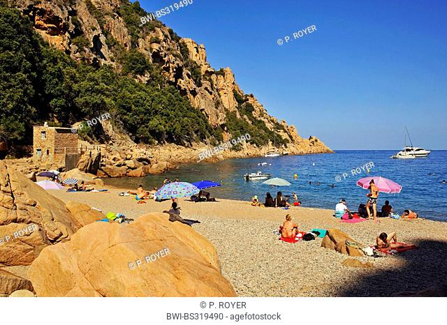 tourists sunbathing on the beach of Ficajola, France, Corsica