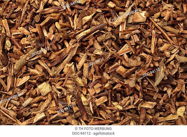 dried herb of the medicinal plant Gleditsia horida sinensis , chinese honey locust