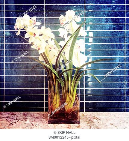 A vase of flowers against a blue tile wall