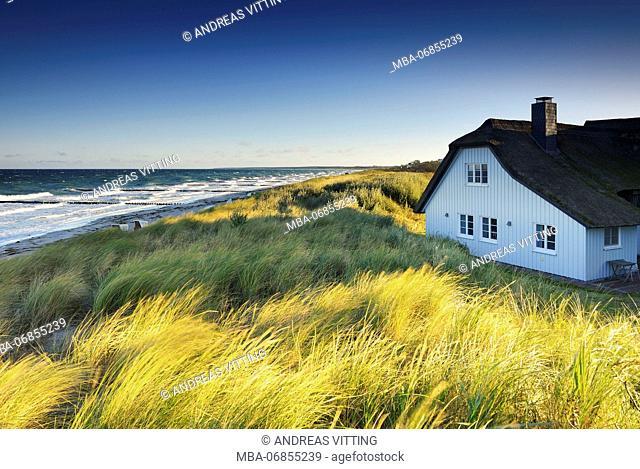 Germany, Mecklenburg-Western Pomerania, Fischland-Darß-Zingst, Darss peninsula, Ahrenshoop, western beach, thatched house in the dunes