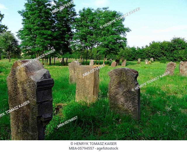 Jewish cemetery in Bodzentyn, Poland