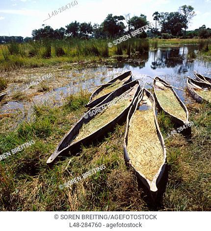 Traditional canoes in Okavango Delta. Botswana